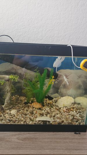 Fish tank with stand for Sale in Kissimmee, FL