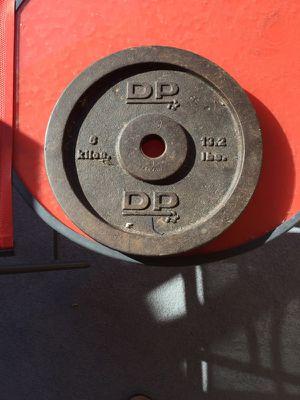 0ne 13.5 cast iron free weight for Sale in Orlando, FL