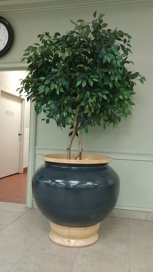 Extra large clay planter pot for Sale in Kissimmee, FL