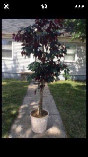 Fake plant for Sale in Dearborn, MI