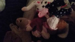 beanie babies for Sale in Abbeville, SC