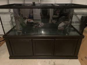 300 Gallon Aquarium w/ Low Iron Sapphire Glass Front Panel for Sale in Cape Coral, FL