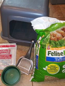 Cat Litter Box And Food Setup for Sale in Gallatin,  TN
