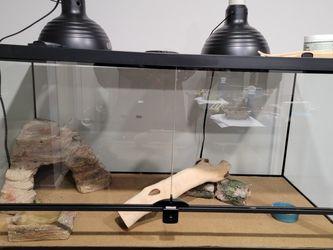 Reptile Terrarium Pluss Accessories 36x18x18 for Sale in Allen Park,  MI