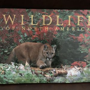 Book - Wildlife Of North America for Sale in Yucaipa, CA