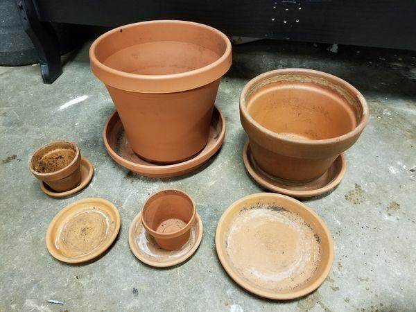 Pots flowers