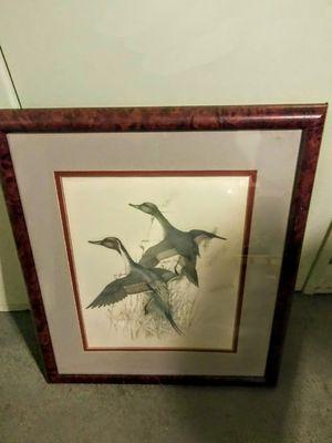 "!! Famous Artist Framed Artwork ""American Pintail"" for Sale in San Fernando, CA"