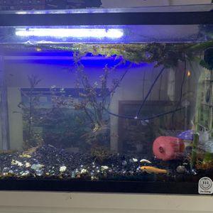 Fish Tank For Sale! Many Assesories for Sale in Santa Cruz, CA