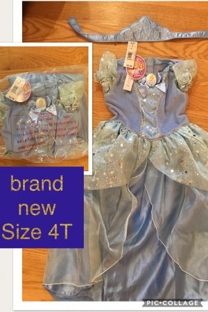 Brand new Cinderella, Anna, Elsa, rapunzel, Snow White, belle costume for Sale in Lisle, IL
