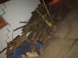 Fire wood free for Sale in Columbus, OH