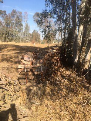 Eucalyptus Firewood for Sale in Clovis, CA