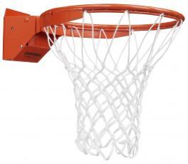 Pro Basketball Hoop - Ultra Breakaway Competition Goal - TORQ-FLEX by Porter for Sale in Fresno, CA