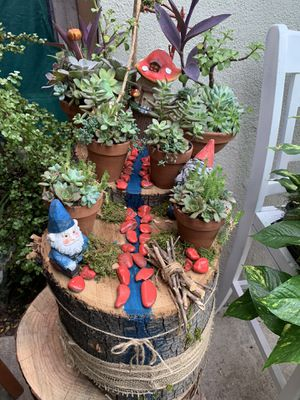 Succulent en tronko grande con duendes for Sale in Bell Gardens, CA