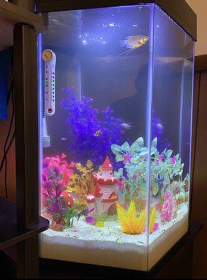 20 gallon hexagon fish tank for Sale in Thornton, CO