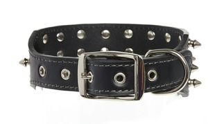 Leather Dog Collar with Spikes for Sale in Queens, NY