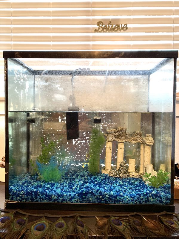 15 Gallon Aquarium only $35!