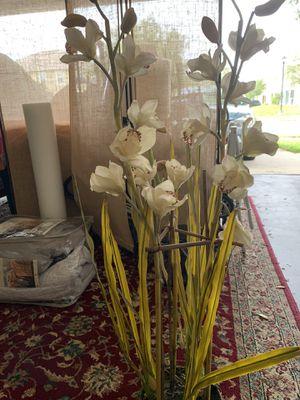 Fake Plant for Sale in Winter Garden, FL