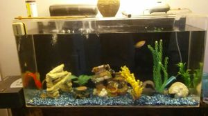 Acrylic sea clear aquarium with everything included for Sale in Vista, CA