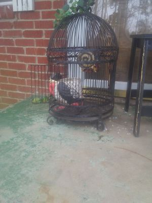 Old bird cage for Sale in Pineville, LA