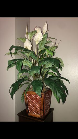 Artificial plant for Sale in Downey, CA