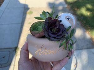 Cute animal succulent arrangement for Sale in Alameda, CA
