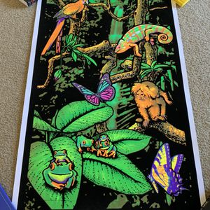 Black light poster 3' x 2' for Sale in Vista, CA
