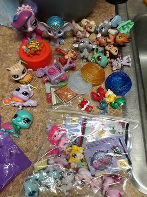 Petshop, hatchimal, Enchantimal, squishies for Sale in Tucson, AZ