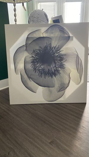 Black & White Peony Canvas for Sale in Rockville, MD