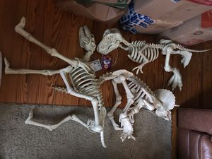 Used, Led dinosaur skeleton outdoor halloween decorations all 3 for Sale for sale  Edison, NJ