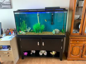 fish tank for Sale in Syracuse, UT