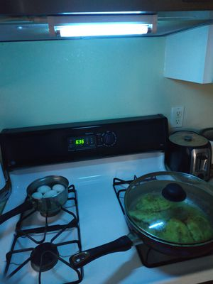 Sterilize your kitchen, stove and appliances for Sale in Portland, OR