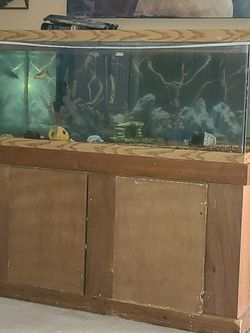 60 Gallon Fish Tank for Sale in Indianapolis,  IN