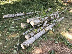 FREE WOOD for Sale in Camas, WA