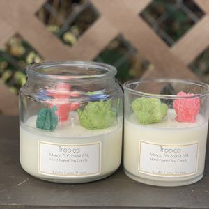 Succulent Candles for Sale in Alhambra, CA