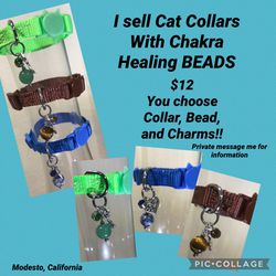 Cat Collars for Sale in Modesto,  CA