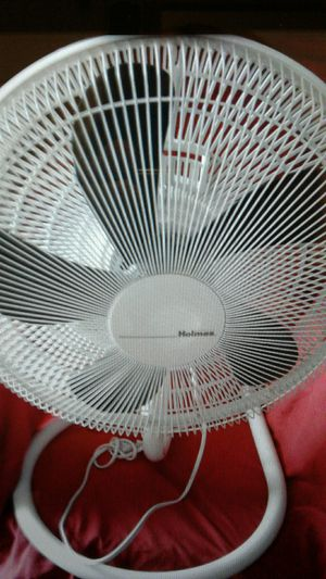 Holmes oscillating pedestal fan for Sale in Palm Harbor, FL