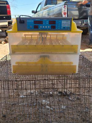 Chicken encubator for Sale in Goodyear, AZ