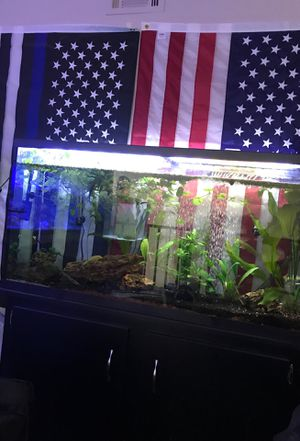 Freshwater planted aquarium and plants for Sale in Agua Dulce, CA