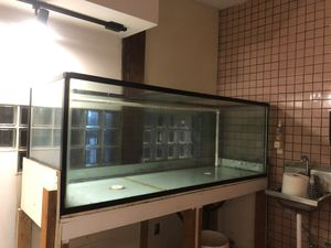 "Large glass fish tank 200 gallons 2'3""H x 2'0""W x 6'3""L FIRM Mill Creek for Sale in Bothell, WA"