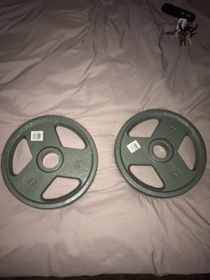 2 X 25 lb Olympic Weights for Sale in Lebanon, PA