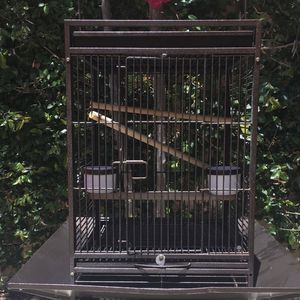 ISO Bird Cage for Sale in Anaheim, CA