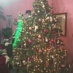 Christmas Tree for Sale in Lakewood, WA
