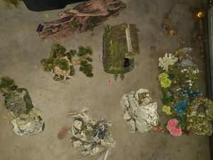 Fish tank decor (medium,large and x-large sizes) for Sale in Longmont, CO