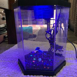 Tank With Light for Sale in Long Beach,  CA