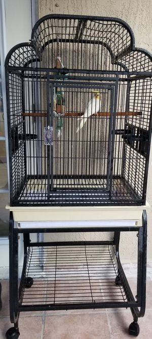 Nice bird cage .....bonita jaula para pajaros for Sale in Hialeah, FL