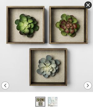 Succulent Shadowbox Decorative Wall Sculpture for Sale in Tempe, AZ