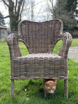 Boho Chair for Sale in Happy Valley,  OR