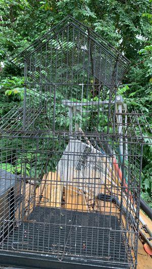 Cage for Sale in Boynton Beach, FL