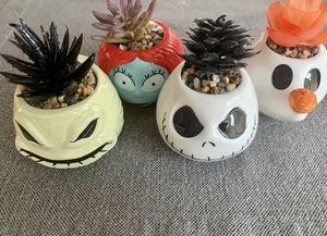 Brand New Nightmare Before Christmas Succulent Set for Sale in Murrieta, CA