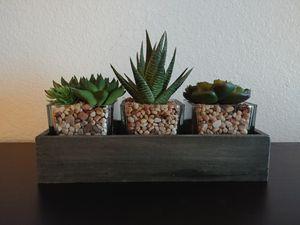 Faux 3 succulent desk decoration for Sale in Seattle, WA